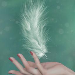 freetoedit editbyme feather hand artwork