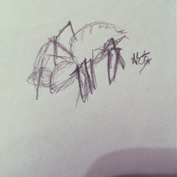 spider drawing scary sketch looksnothinglikeaspider freetoedit