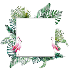 flamingo tropical tropicalflower tropicalleaves leaves freetoedit
