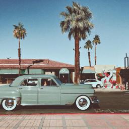 retro palmsprings car tree vintage freetoedit