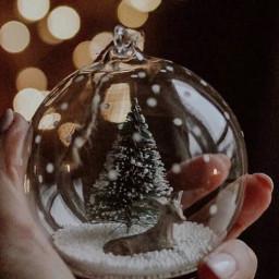 snow christmas merychristmas bts photography