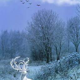 freetoedit vipshoutout winter landscape scenery