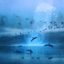 freetoedit lake ducks dolphins moon
