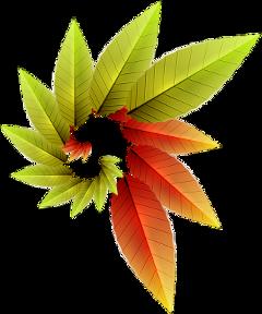 leaves freetoedit