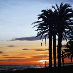 sunset sunsetonthebeach beach beachphotography spain freetoedit