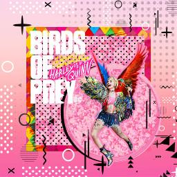 birdsofprey: wbsponsored freetoedit birdsofprey ecbirdsofpreywhatwouldharleydo birdsofpreywhatwouldharleydo #WhatWouldHarleyDo #birdsofprey #HarleyQuinn #WarnerBros #MargotRobbie #BOP
