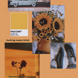 arthoeaesthetic artsy vintage freetoedit