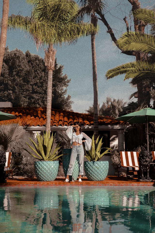 #freetoedit #remixit #photography #summer #sky #travel #people #nature #beach #pool #makeup #aesthetic #tumblr #vsco #vintage #palmtrees #succulent #design #decoration #architecture