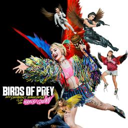 freetoedit birdsofprey: wbsponsored birdsofprey ecbirdsofpreywhatwouldharleydo birdsofpreywhatwouldharleydo #WhatWouldHarleyDo #birdsofprey #HarleyQuinn #WarnerBros #MargotRobbie #BOP