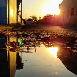 freetoedit reflections photochallenge puddle gutter pcreflections