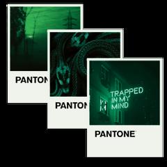 pantone aesthetic aestheticedit aesthetictext green freetoedit
