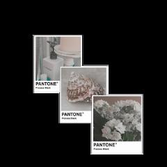 freetoedit pantone white shell bathroom