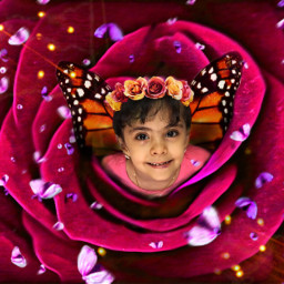 freetoedit art photography flower rose