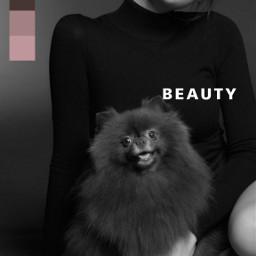 jennie blackpink bts beauty inyourarea