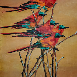 mypainting colorful birds freetoedit