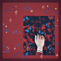 freetoedit aesthetic red redaesthetic butterfly srcsunnyclouds sunnyclouds