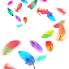 feathers multicolor colorful brush freetoedit