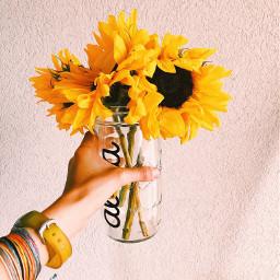 yellowaesthetic yellow cute photography aesthetic
