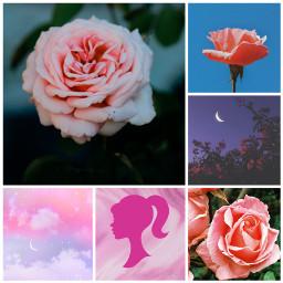 freetoedit ccpinkaesthetic pinkaesthetic