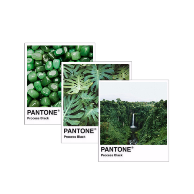 #pantone #green #aesthetic