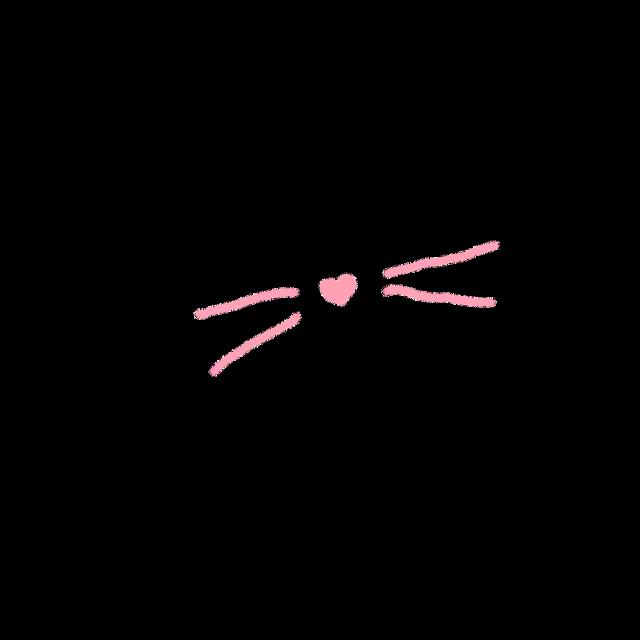 #猫  #可爱 #贴纸
