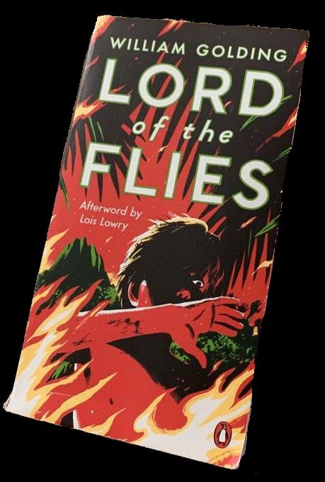 #lordoftheflies #books #literature #darkacademia #freetoedit