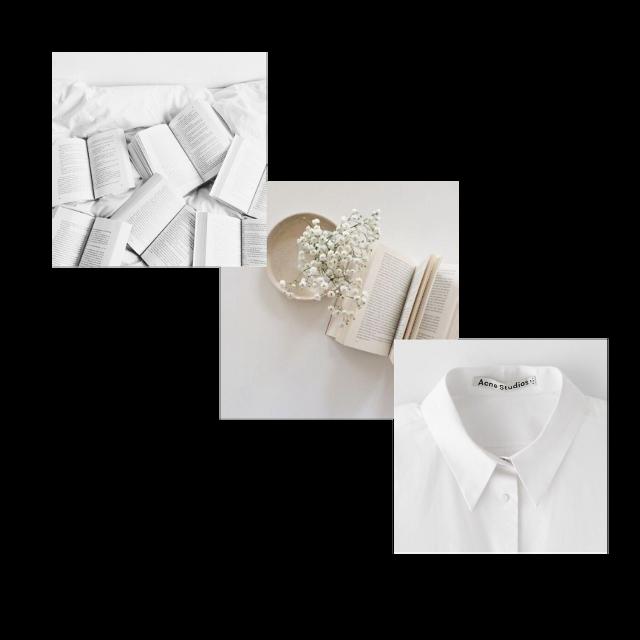 #white #aesthetic #whiteasthetic #school #books #flowers #flower #frame #frames #freetoedit