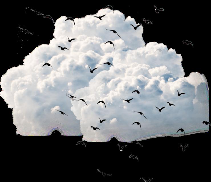 #clouds ,birds