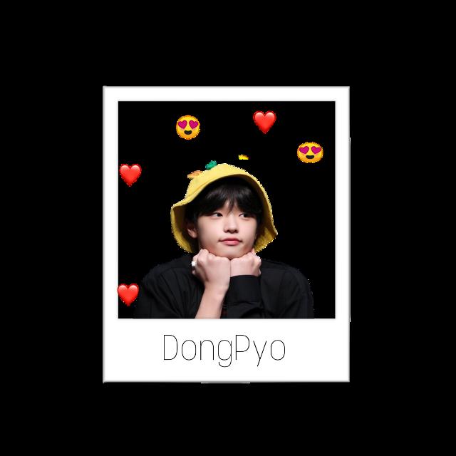#dongpyo