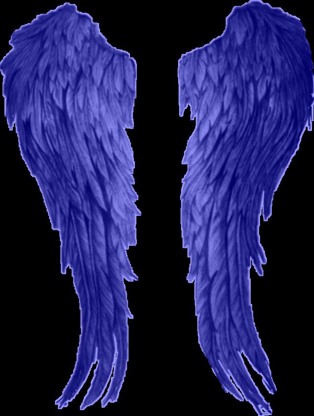 #blue #angelwings #sticker #freetoedit