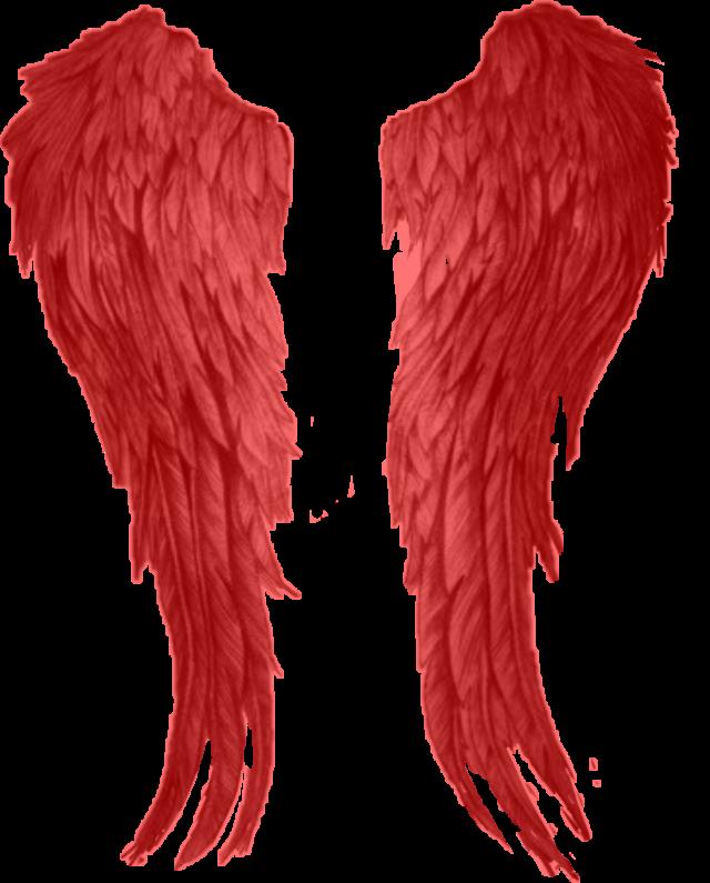 #red #angelwings #sticker #freetoedit