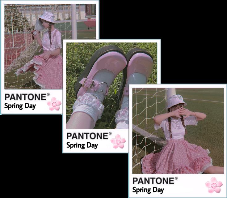 #springday #rosa