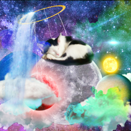 freetoedit cat space planets colors