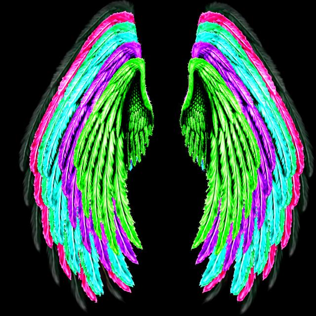 #wings #colorful #creative #creator #edit #editor