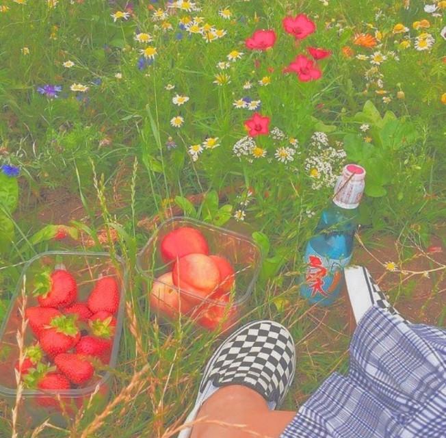 ֊ॱ⋅ꓸᐧໍ∘✧ ֊ॱ⋅ꓸᐧໍ∘ 𝒍𝒊𝒇𝒆 𝒊𝒔 𝒉𝒂𝒓𝒅 𝒃𝒖𝒕, 𝒊'𝒎 𝒔𝒕𝒓𝒐𝒏𝒈                        #colorful #aesthetic #strawberry #peach #vans