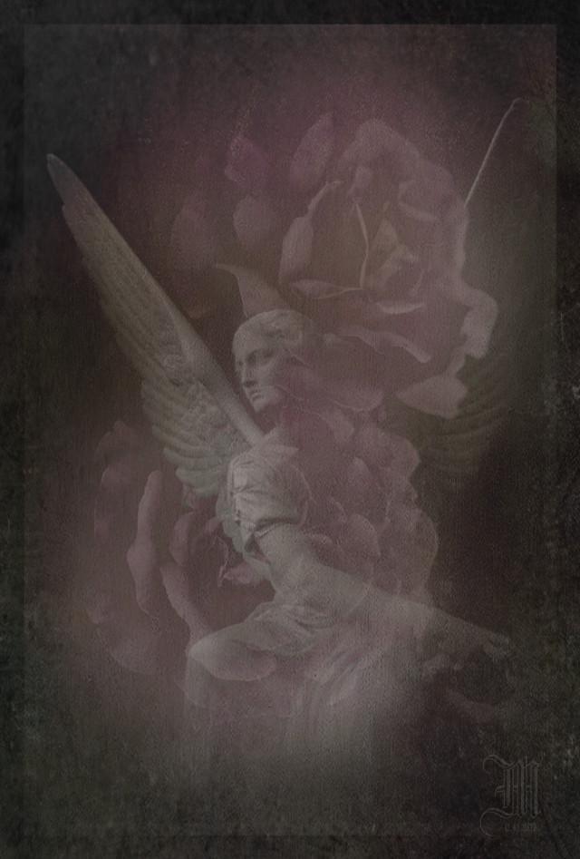꧁  𝓗𝓪𝓹𝓹𝔂 𝓥𝓪𝓵𝓮𝓷𝓽𝓲𝓷𝓮𝓼 𝓓𝓪𝔂  ꧂  https://youtu.be/NfLLradxKKc 🎼 Kirlian Camera 🎶 Ascension  #editedbyme #angel #roses #myphotography #myphotoedited #doubleexposure #myedit #myart #myartwork #darkart #madewithpicsart