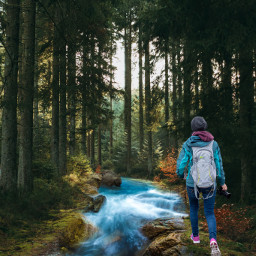 freetoedit fantasy forest river travel