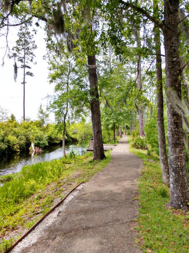 Long Hike on a Beautiful Trail - #freetoedit #nature #outdoors #naturelover #trail #adventure #adventuretime #travel #happy #happiness #beautiful #fun #hiking #creek #beautifulday