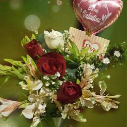 love myson roses