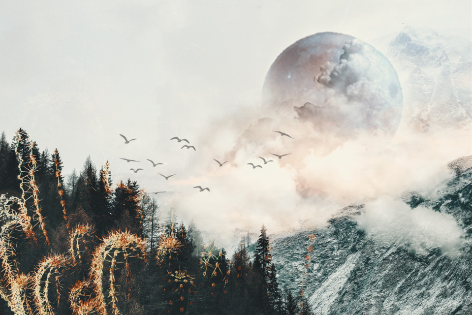 #freetoedit #fantasy #art #forest #clouds #sky #birds #planet #mountains #nature