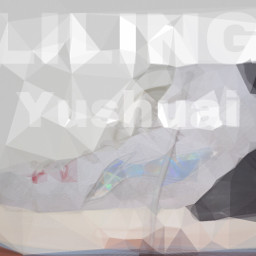 liling snkrs
