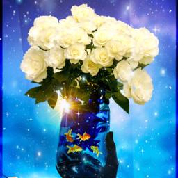 goldfishblooms jar goldfish roses whiteroses ircemptyjar freetoedit