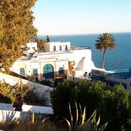 tunisia nature sidibousaid