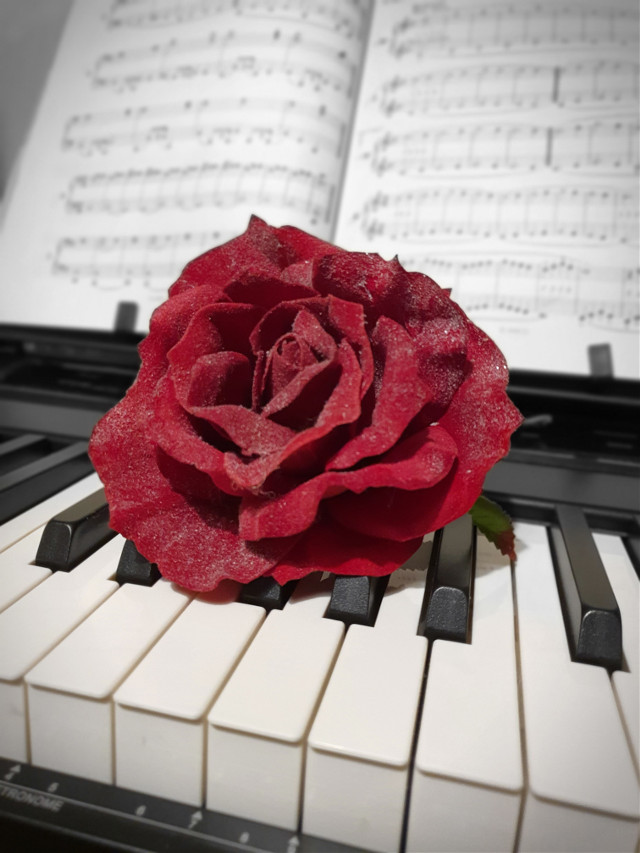 If you #likeit click ⬇️⬇️⬇️ for #vote https://picsart.com/i/319753476116201?challenge_id=5e4a6e68f5c33b0dfd88a384  #freetoedit #pianokeys #redrose #music #art #myphoto #picsart @picsart @juliajulia5552 #likeit #vote4me #passion #red #blacknwhite #pianoart  #pcsinglestilllife #singlestilllife