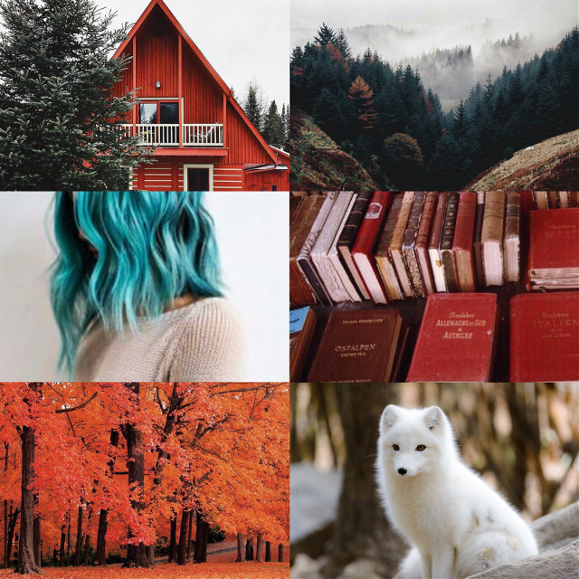 #background #wallpaper  #woods  #whitefox  #orange  #bluehair  #books #autumn  #adventure
