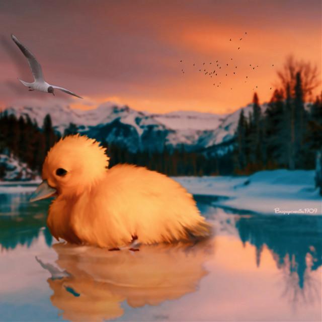 #giantanimal #fantastic #landscape   #freetoedit #sunset #duck #littleduck #natural #be_creative #mycreation #nature #beautiful #inspire #heypicsart #dreamy #papicks @picsart