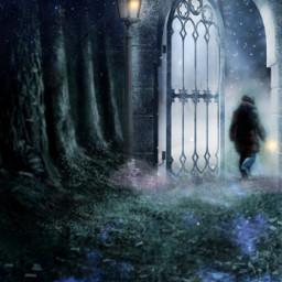 freetoedit vipshoutout fantasy magical art