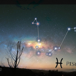 freetoedit starsigns galaxy galaxybackground pisces