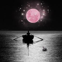 nightsky fullmoon digitalart digitalartist freetoedit