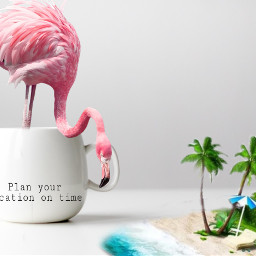 freetoedit flamingo holliday cup sand